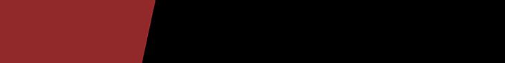 sfm network color logo